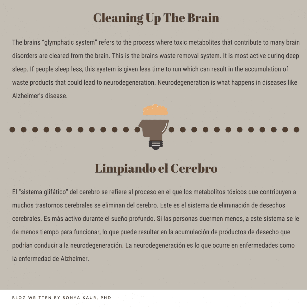 cleaning the brain